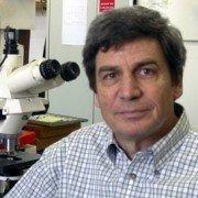 Prof. Uri Oron