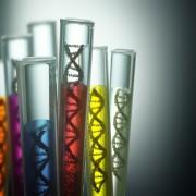 DNA in tubes