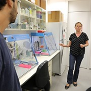 Prof. Dorothee Huchon and her research group have discovered quite by chance an animal that doesn't need to breathe!
