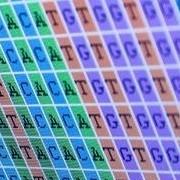 Edmond J. Safra Bioinformatics Program